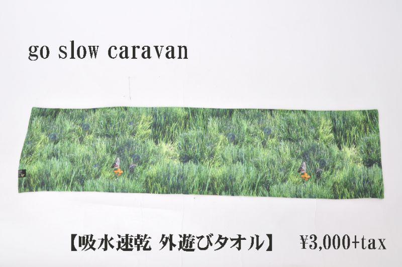 画像1: go slow caravan 吸水速乾 外遊びタオル 芝生 小物 雑貨 (1)