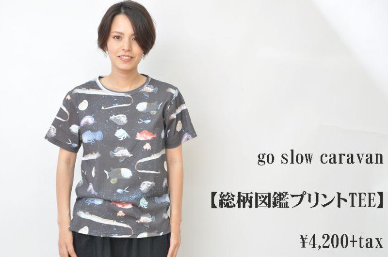 画像1: go slow caravan 総柄図鑑プリントTEE 深海魚図鑑 レディース 人気 通販 (1)