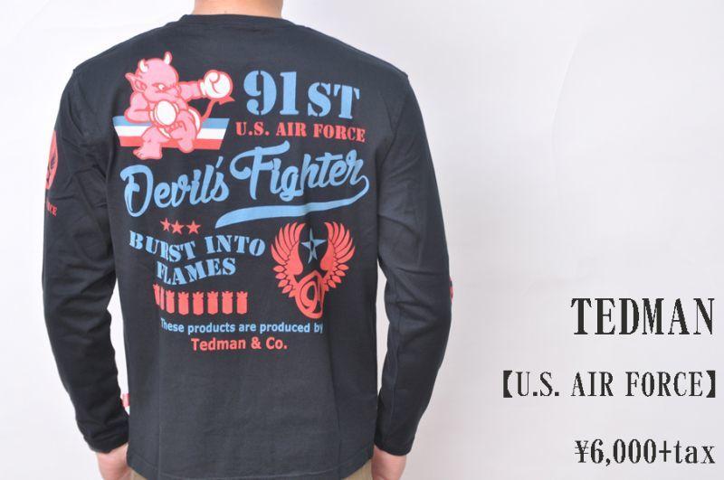 画像1: TEDMAN 長袖Tシャツ U.S. AIR FORCE TDLS-335 BLACK エフ商会 メンズ 人気 通販 (1)